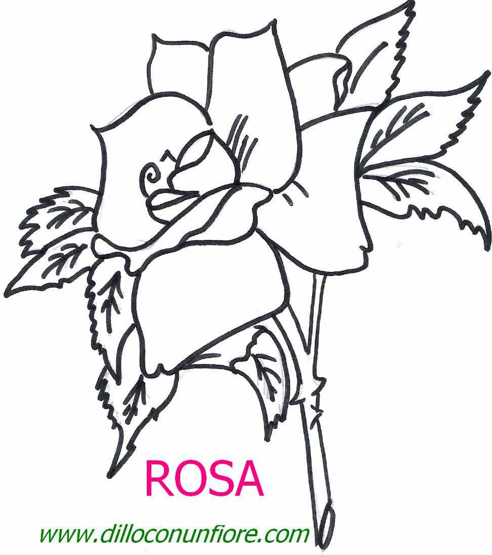Fiori da colorare per natale 2015 mimose da colorare per for Colorare le rose