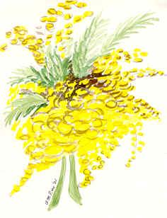 Festa della donna mimose foto poesie eventi mostre for Disegni del mazzo sul basamento degli scioperi